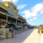 Gulfstream Park grandstand copyright All Star Press 2012
