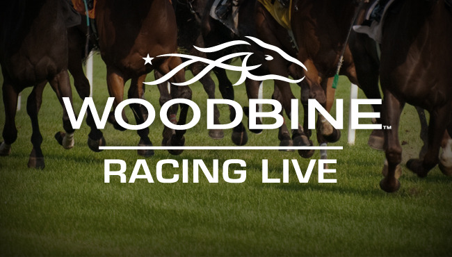 Woodbine Live Video