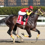 Recap of the 2012 Breeders' Cup Selections from AGameofSkill.com