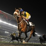 Dubai Carnival Update: Zabeel Mile Next in Musir's Comeback; Royal Diamond Aims for Trophy