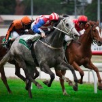 Melbourne Turf racing in Aussie