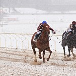Winter Horse Racing Tests Your Patience