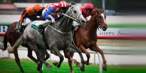 Melbourne_Australian racing
