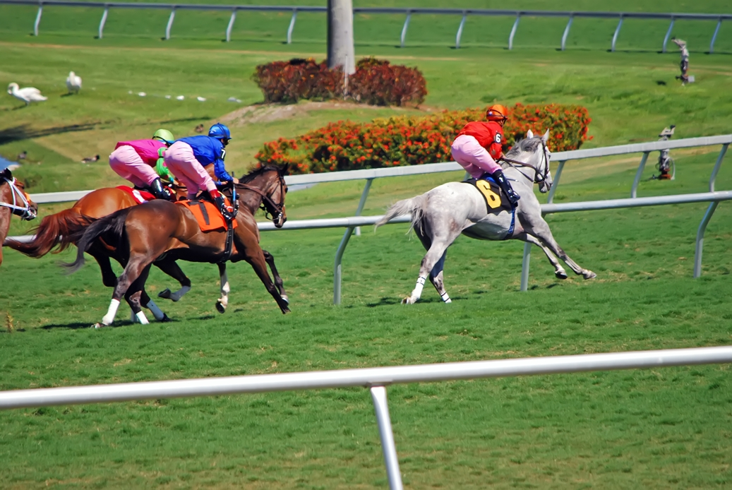 $500,000 Pick-6 at Gulfstream for Saturday 6/27 - A Game of Skill