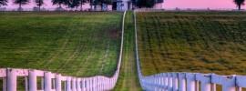 KY Farm