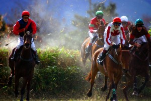 Steeplechase grass flying