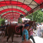 147th Saratoga Meet Kicks Off Friday