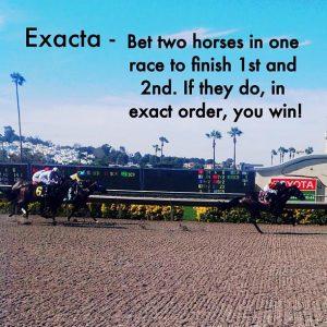 exacta horse racing basics