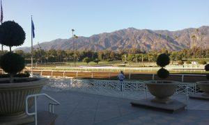 Santa Anita apron