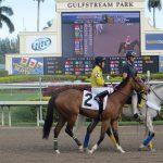 Dark Horse for the 2018 Florida Derby?