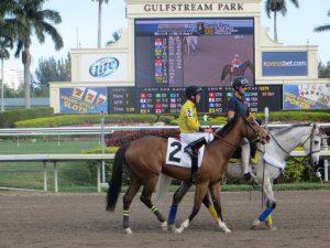 Gulfstream Park horse tote