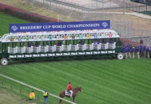 breeders cup 2010