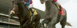 How I got into horse racing