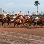 Florida Banned Greyhound Racing In 2018. Is Horse Racing Next?