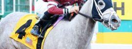 A closer look at Alex Birzer, rider of the heartland
