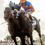 Lone Sailor favored in Mineshaft Handicap at the Fair Gronds