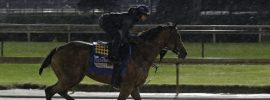 Proposal to allow horse racing in Georgia clears Senate panel