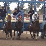 Horse racing is back at the Rillito Race Track