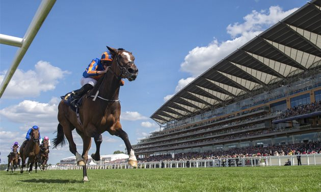 Aidan O'Brien targeting Dubai World Cup Night for Magic Wand | Dubai Turf Dubai Sheema Classic 2019