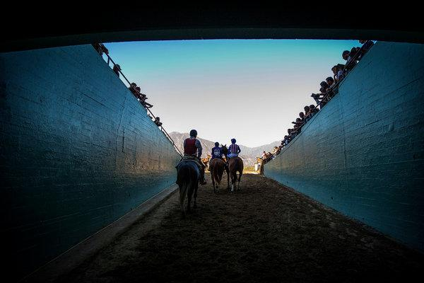 Horse Deaths at Santa Anita Spell Trouble for an Industry