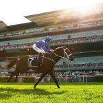 Record breaking Winx secures 33rd consecutive victory in final race
