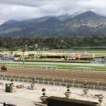 Dianne Feinstein calls for suspension of races at Santa Anita