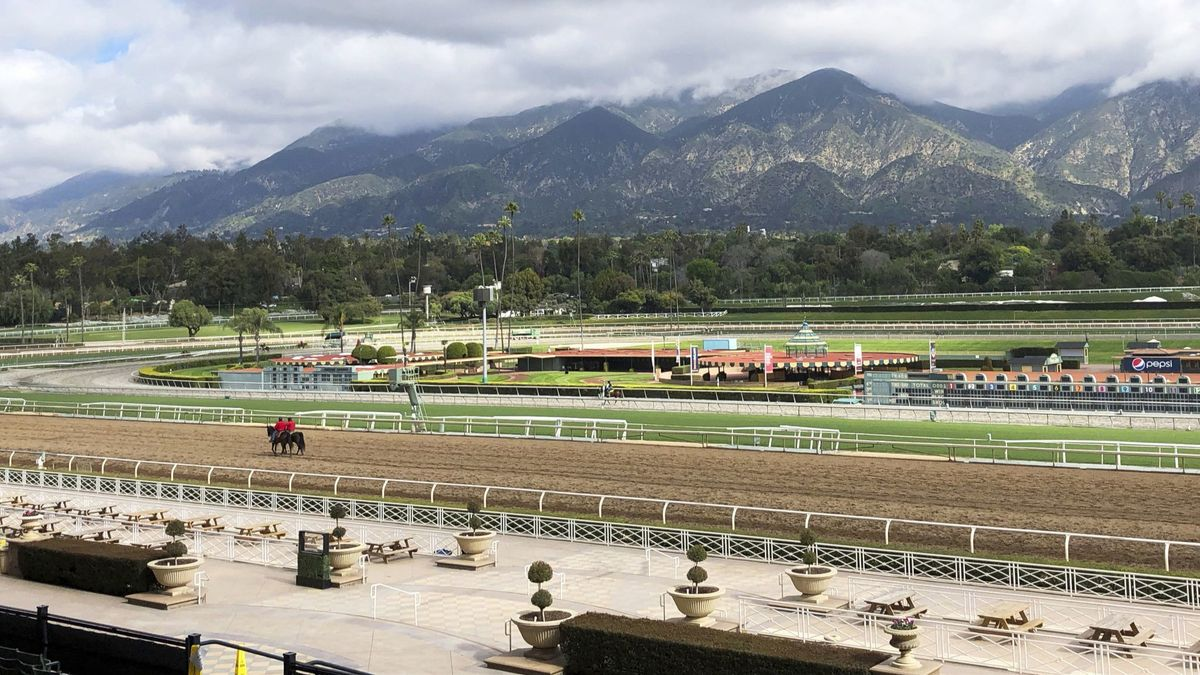 Dianne Feinstein calls for suspension of races at Santa Anita