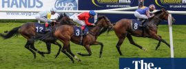 Talking Horses: everyone a loser with William Hill closures news