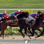 Thanks To Sports Betting, New Jersey Horse Racing Is Looking Up