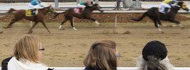 JONES: Horse racing at Century Mile facing a rough ride