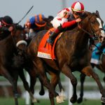 Racing and NFL won't touch down together as date for Pegasus World Cup revealed