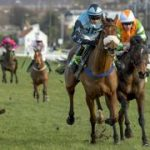 Horse racing college course comes under starter's orders