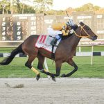 King Guillermo pulls off 49-1 shocker in Tampa Bay Derby