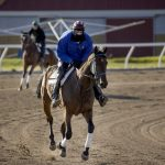 Senate passes bill to assist horse racing at Minnesota's Canterbury Park, Running Aces