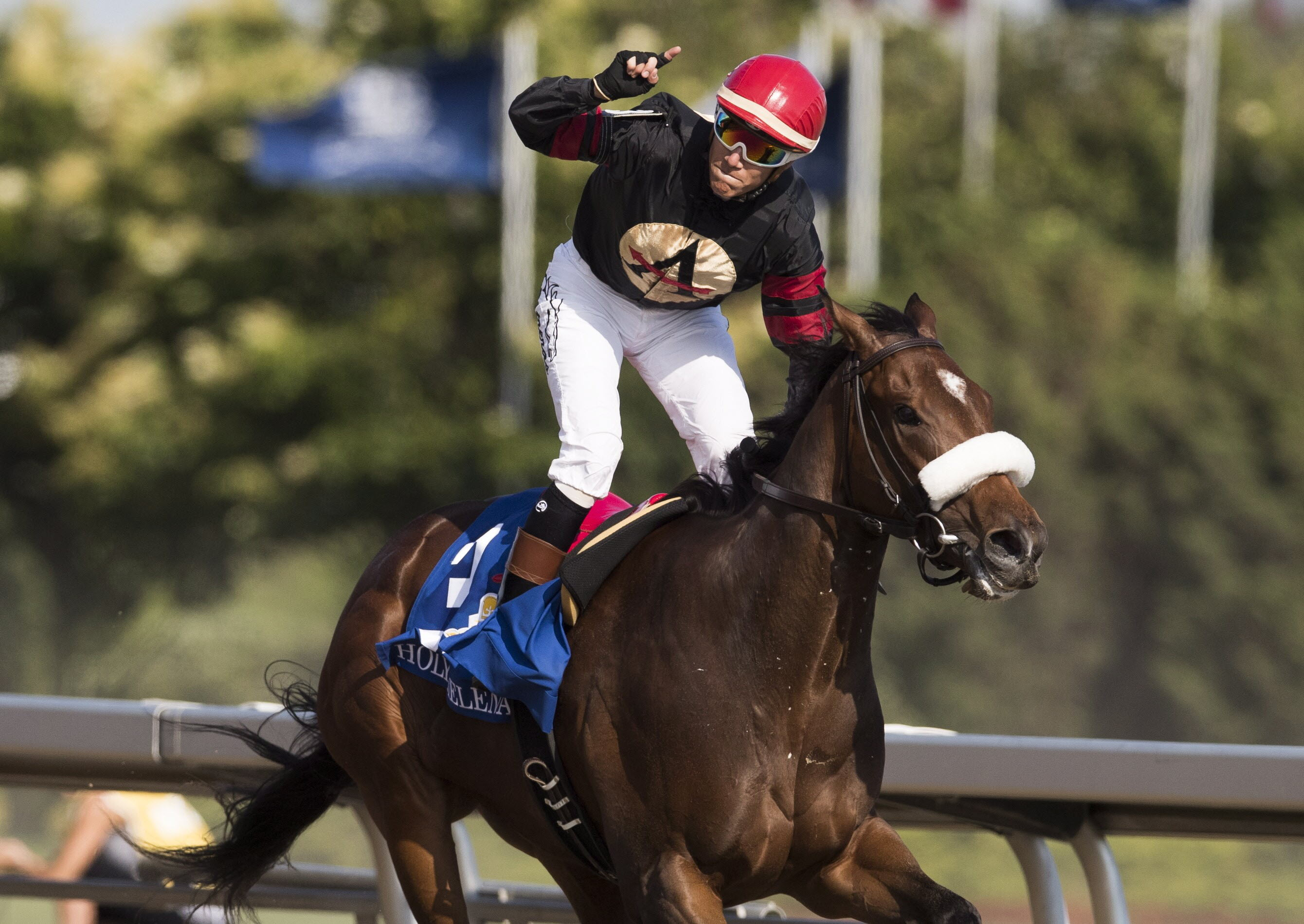 Horse racing people pleased with news that Queen's Plate will run on Sept.12