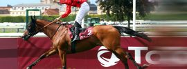 French horse racing blurr