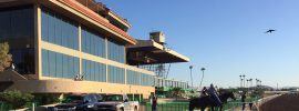 Appeals Court Upholds Arizona Horse Racing Signals Law