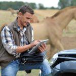 California horse racing backs equine innovation