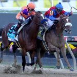 Breeders' Cup Classic or Distaff? Decision still to come for Swiss Skydiver