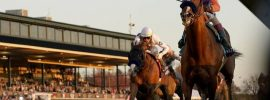 Horse racing hopes for return to normal