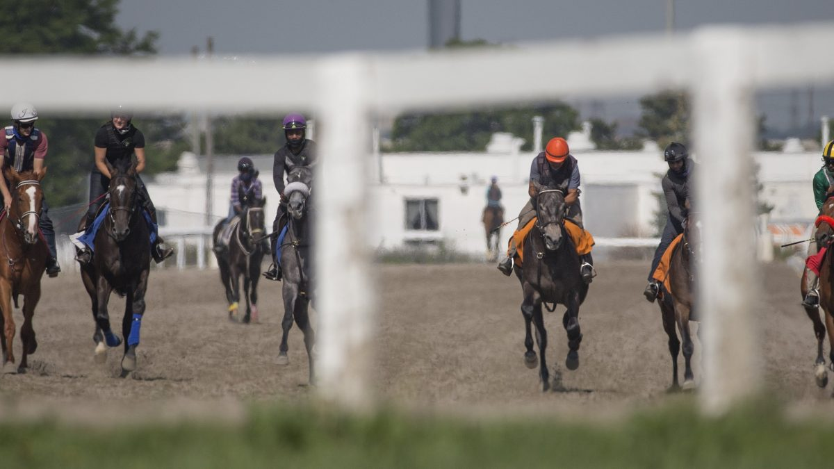 Canada bans methadone for race horses