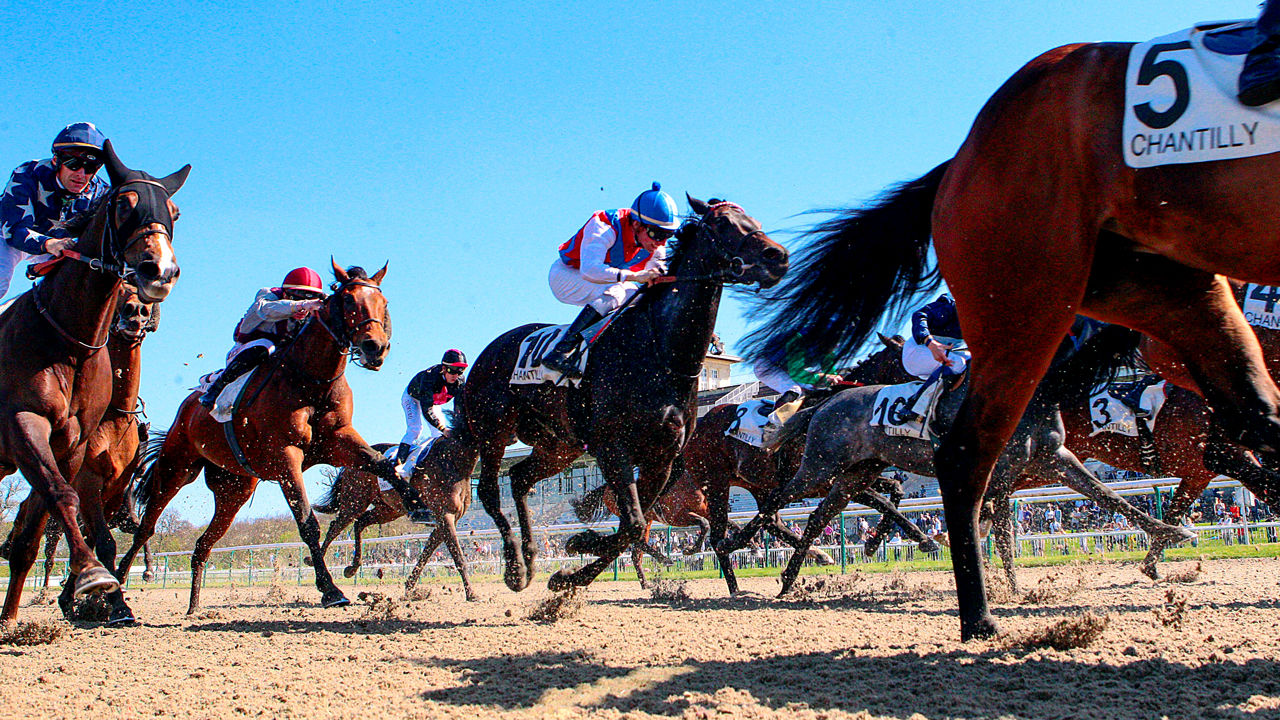 The best way to win a horse race? Mathematicians may have the answer