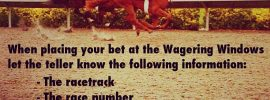 DelMar how to place a wager