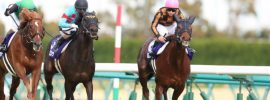 Japanese horse racing posts solid growth despite challenges