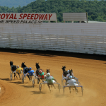 Ponies or pupils? Gov. Wolf looks to move money from horse racing fund to college scholarships