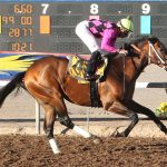 New Mexico horse owners struggle with no racing at Sunland Park