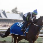 Saratoga Race Course welcomes horses back; fans up next