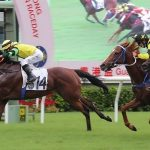 Hong Kong sees all-time record turnover for horse racing betting