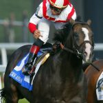 'They wanted to put Arlington on the map': Looking back at 40 years of the Arlington Million